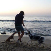 Beachplaytimeinthesunset